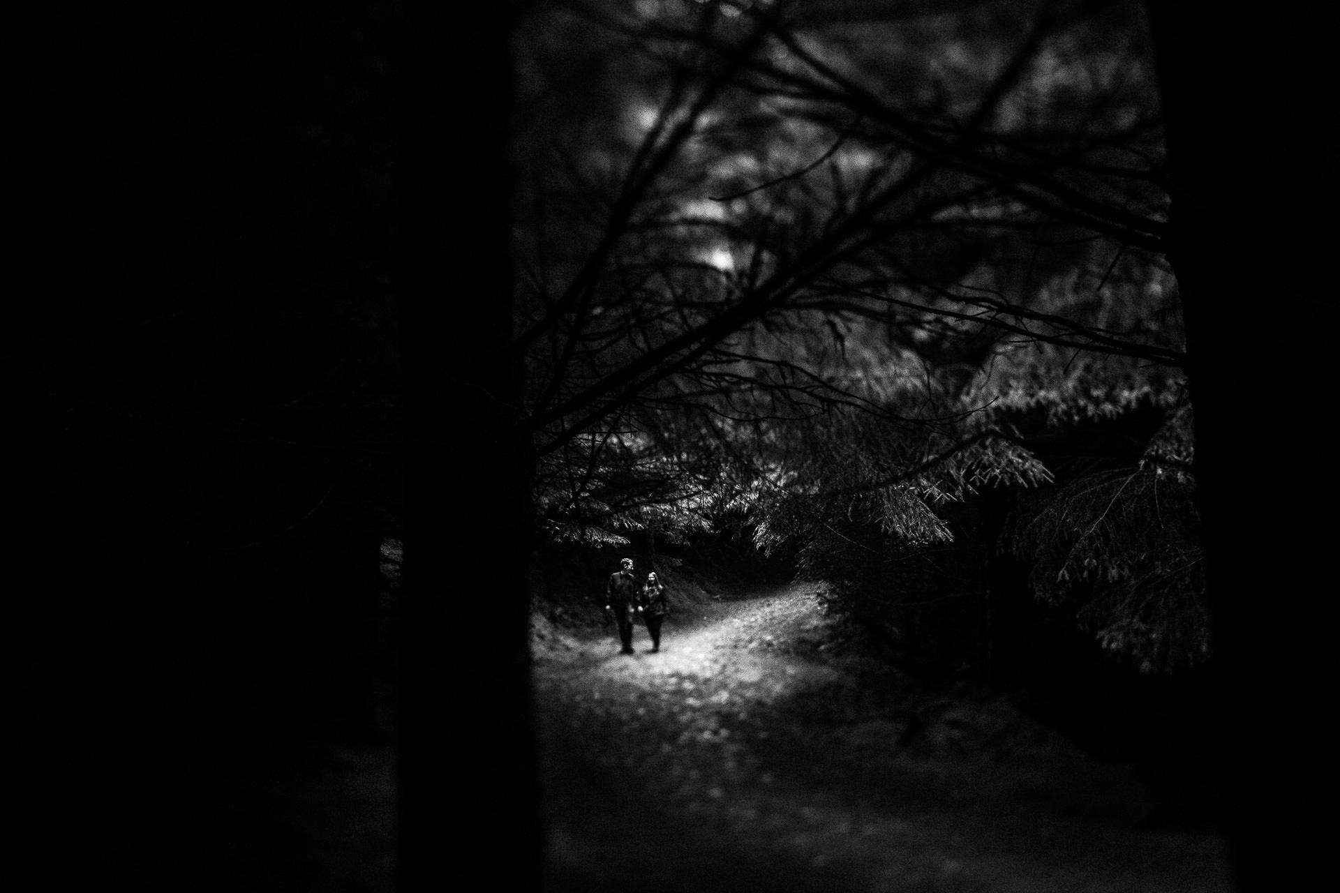 Whinlatter Pre Wedding Shoot Lake District - N&P - couple walking through the woods
