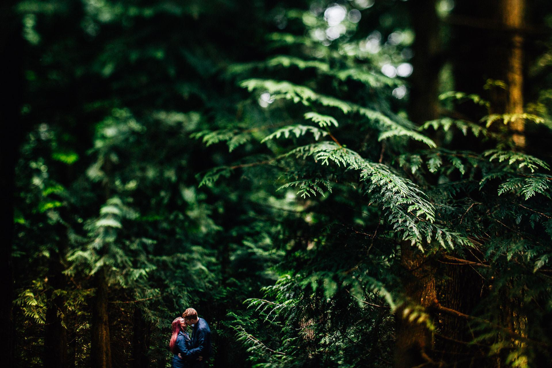 Whinlatter Pre Wedding Shoot Lake District - N&P - tilt shift TSE shot of couple in the trees