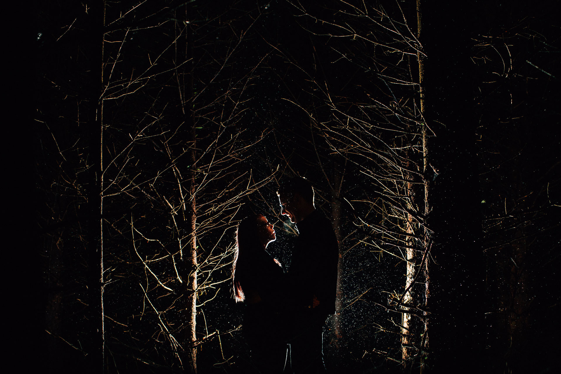 Whinlatter Pre Wedding Shoot Lake District - N&P - backlit flash OCF shot of couple in the trees